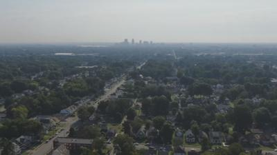 Tree-lined neighborhoods with cityscape in background