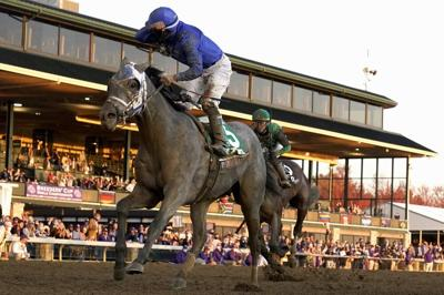 Jockey Luis Saez reacts aboard Essential Quality as they win the Breeders' Cup Juvenile