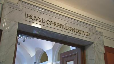 Longtime state Rep. Horlander ousted in Democratic primary