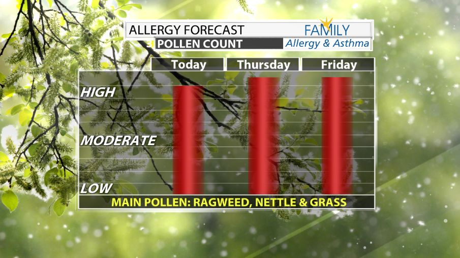 Pollen Counts are Sky High | Weather Blog | wdrb com