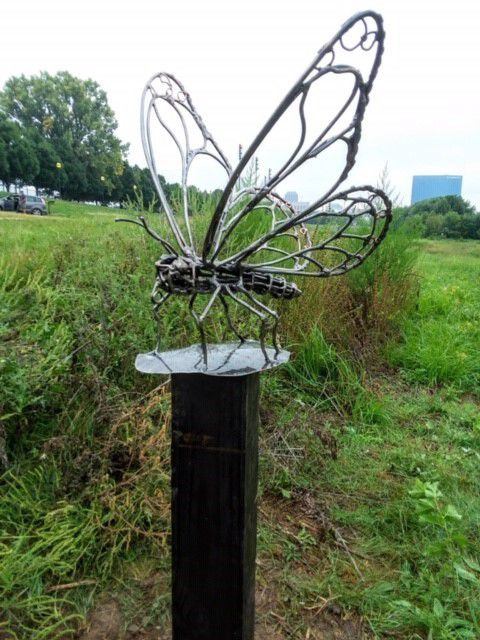 Indiana Sculpture Butterfly.jpg