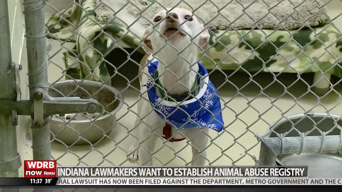 Indiana bill would create database of convicted animal abusers