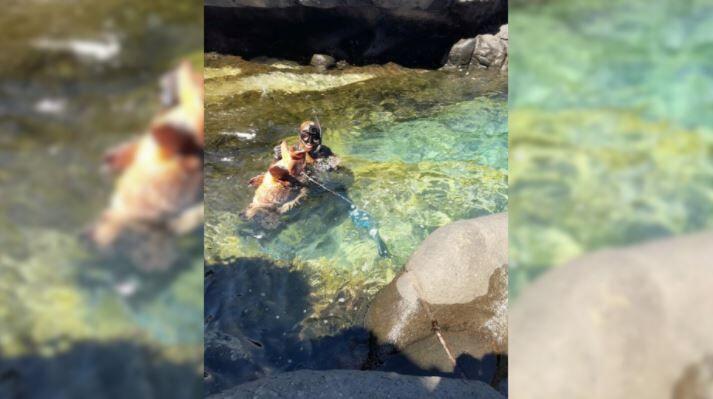 grouper caught 11-21-20.JPG