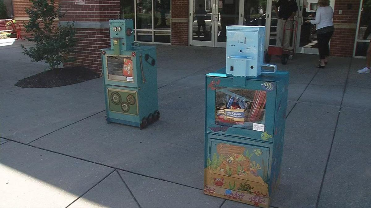 Little Library Boxes
