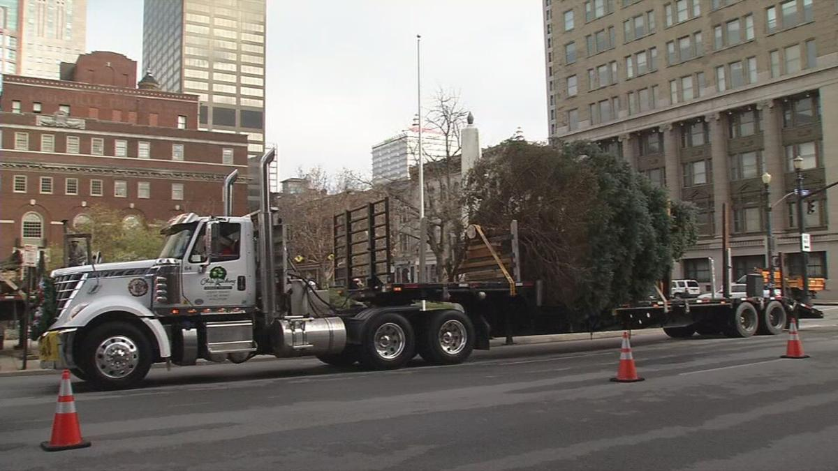 Louisville's 2020 Christmas tree arrives downtown