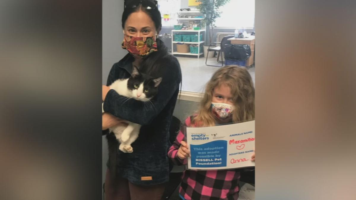 Pet adopted during Kentucky Humane Society's Empty the Shelter event