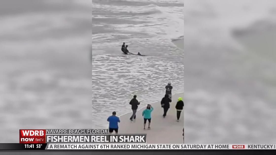 10-foot Great White Shark caught off Florida beach near Destin