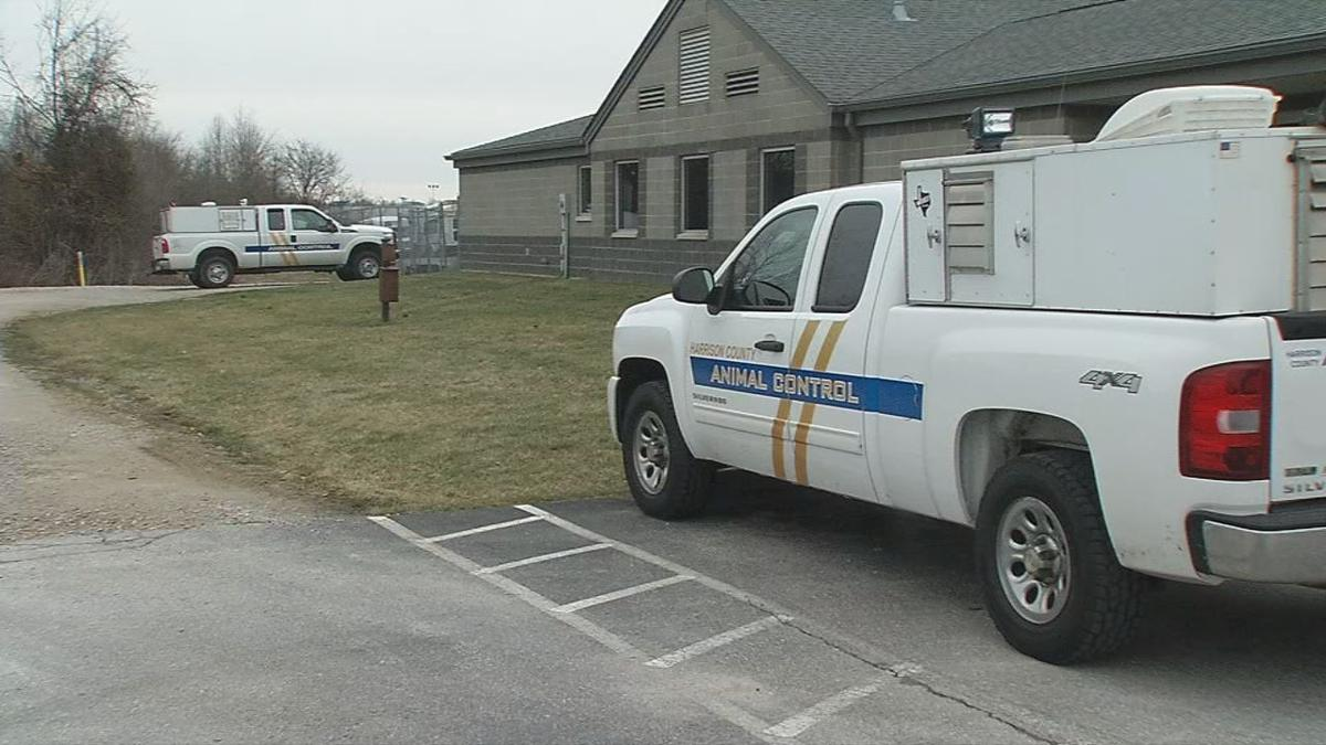 Harrison County animal shelter