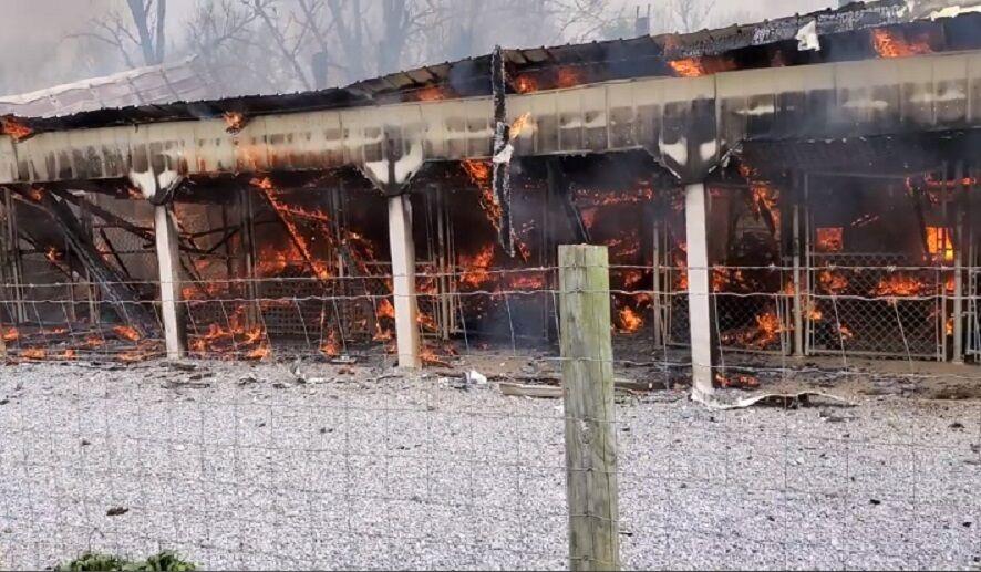 DOGGY STYLE KENNELS - BARDSTOWN FIRE 2.jpg