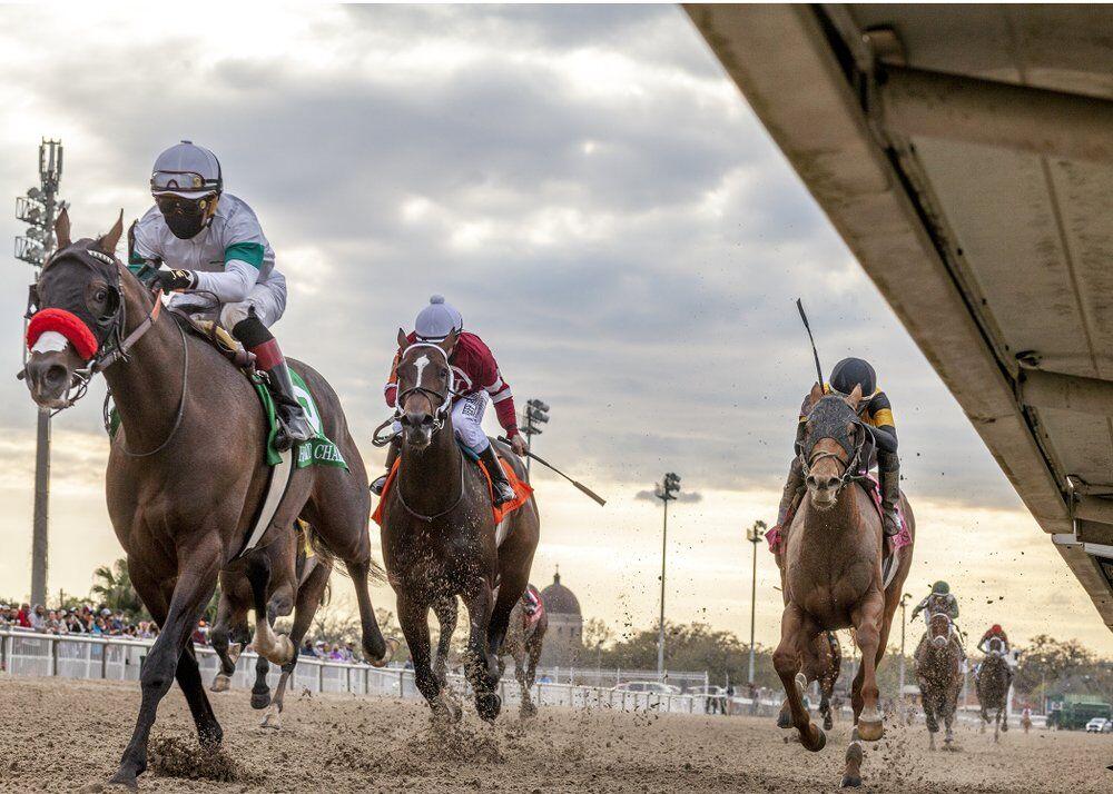 Louisiana Derby 2021 AP.jpeg