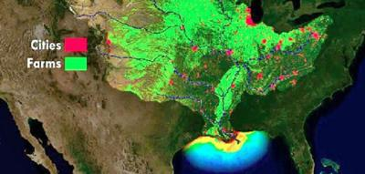 'DEAD ZONE': NOAA Forecasts Very Large Hypoxic Area For Gulf Of Mexico...