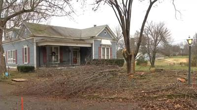 Tree removal company urges use of professional services after Louisville man dies cutting branches