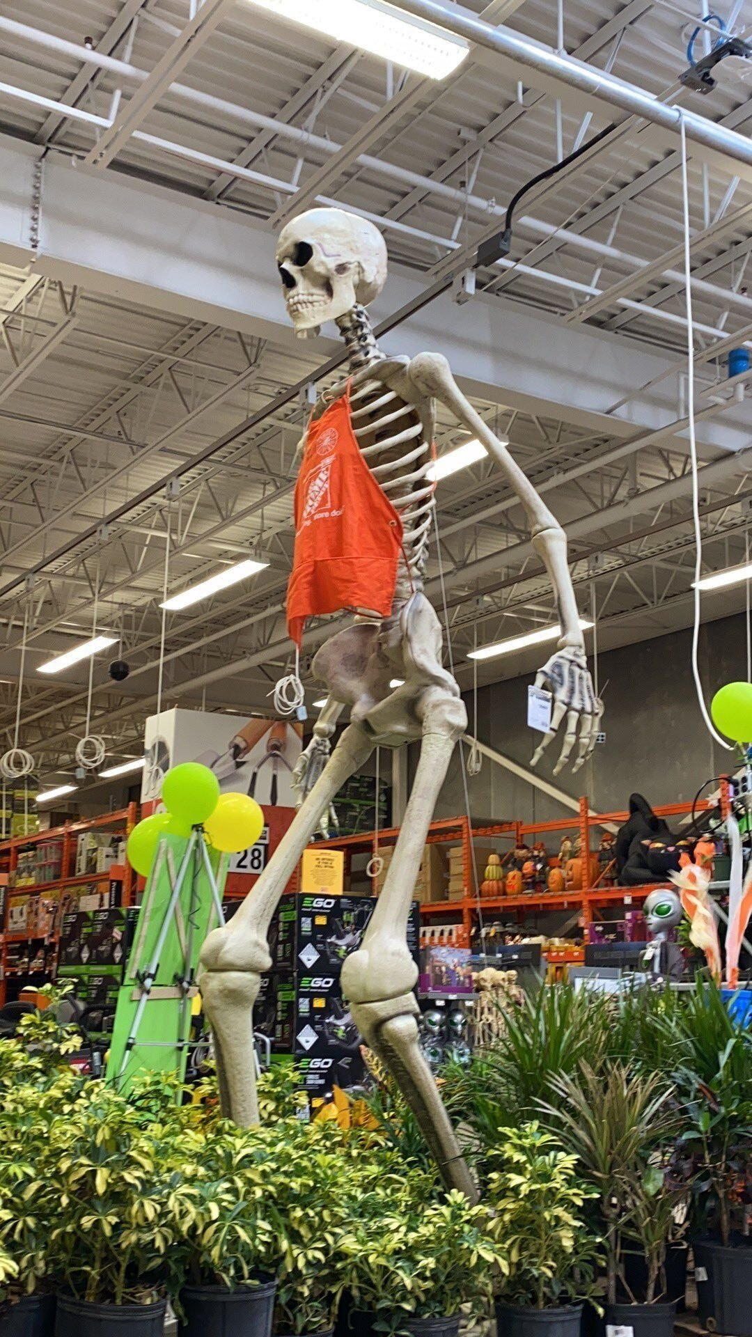 Home Depot S Giant Halloween Skeleton Sells Out Online I Love Him National Wdrb Com