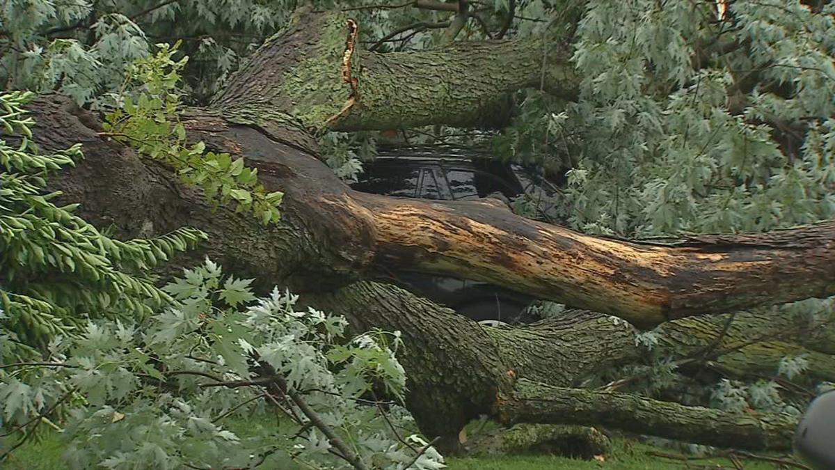 Sunday storm damage 1.jpg