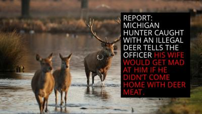 Mich. hunter blames wife for illegally killed deer