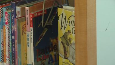 Library books generic.jpeg