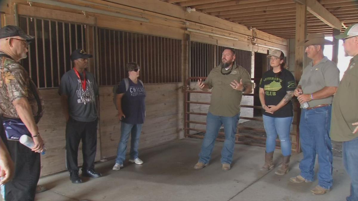 Veterans Club equine therapy meeting.jpg