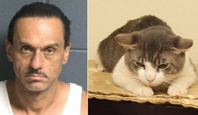Aaron Spaulding accused of force feeding meth to cat in Las Cruces, New Mexico