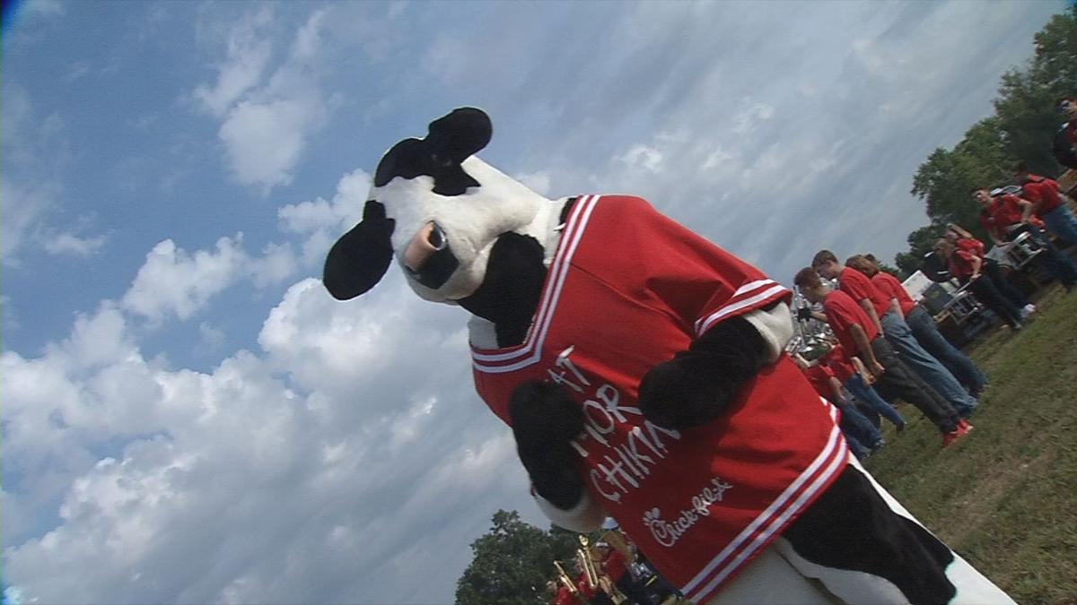 The Chick-fil-A 'Eat More Chicken' cow