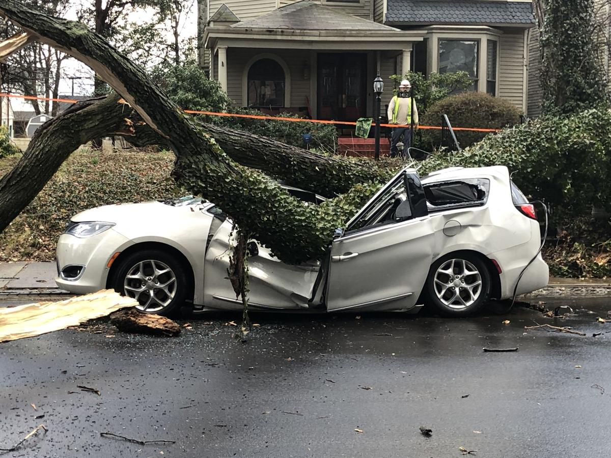 STORMS 3-14-19 - TREE ON A CAR - HEPBURN AVE - HIGHLANDS - JOHN BEGLEY.jpg