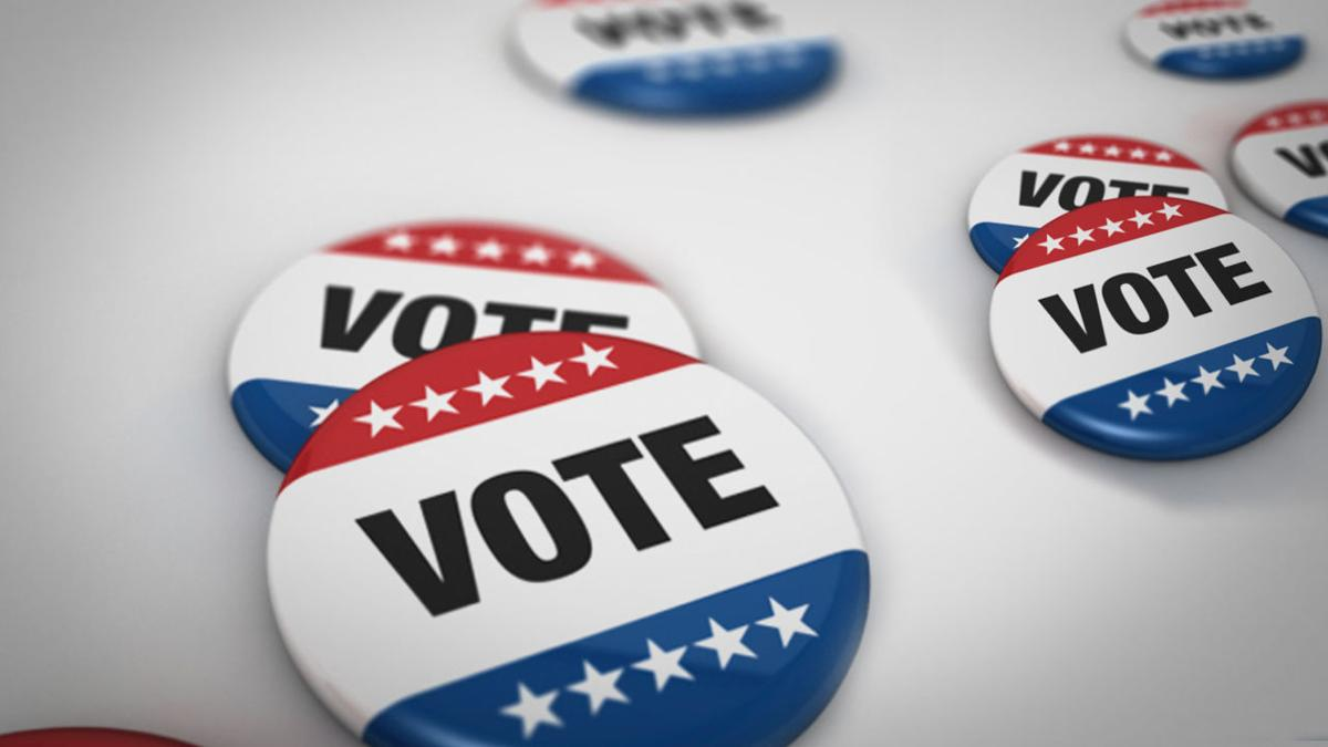 wide_vote pins - voting - elections - generic