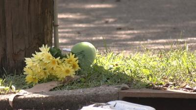 flowers placed at bus stop