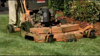 SWAPPING GIGS: Sterling Riggs finds out what it takes to be a professional landscaper