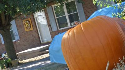 Sex offender warning ahead of trick-or-treating