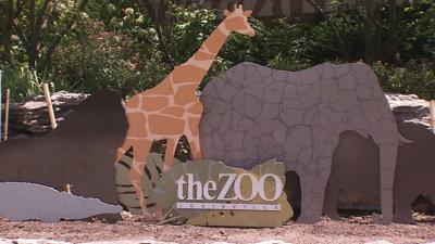 The Louisville Zoo sign