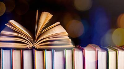 BOOKS - LIBRARY - GENERIC - FILE  (3).jpg