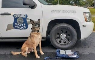 Indiana State Police K9 'Riggs'