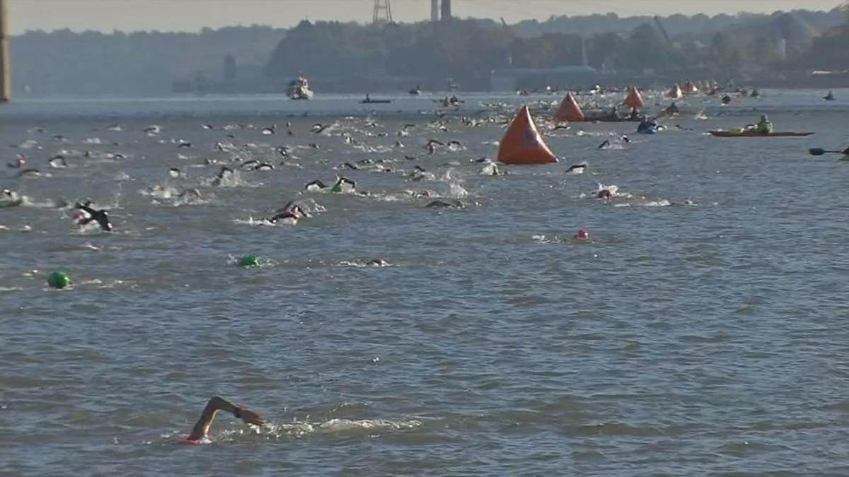 Ironman Swimmers in Ohio River