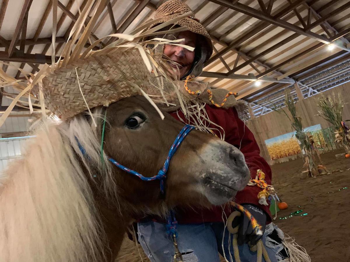 "Miniature Horse Costume Class ""The Vet and her Patient ...   Mini Horse Costume"