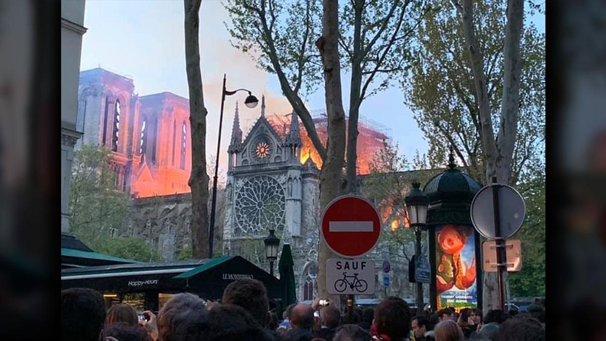 Photo taken by Figg family of Notre Dame Cathedral