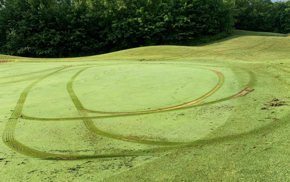 Sun Valley Golf Course Tire Tracks