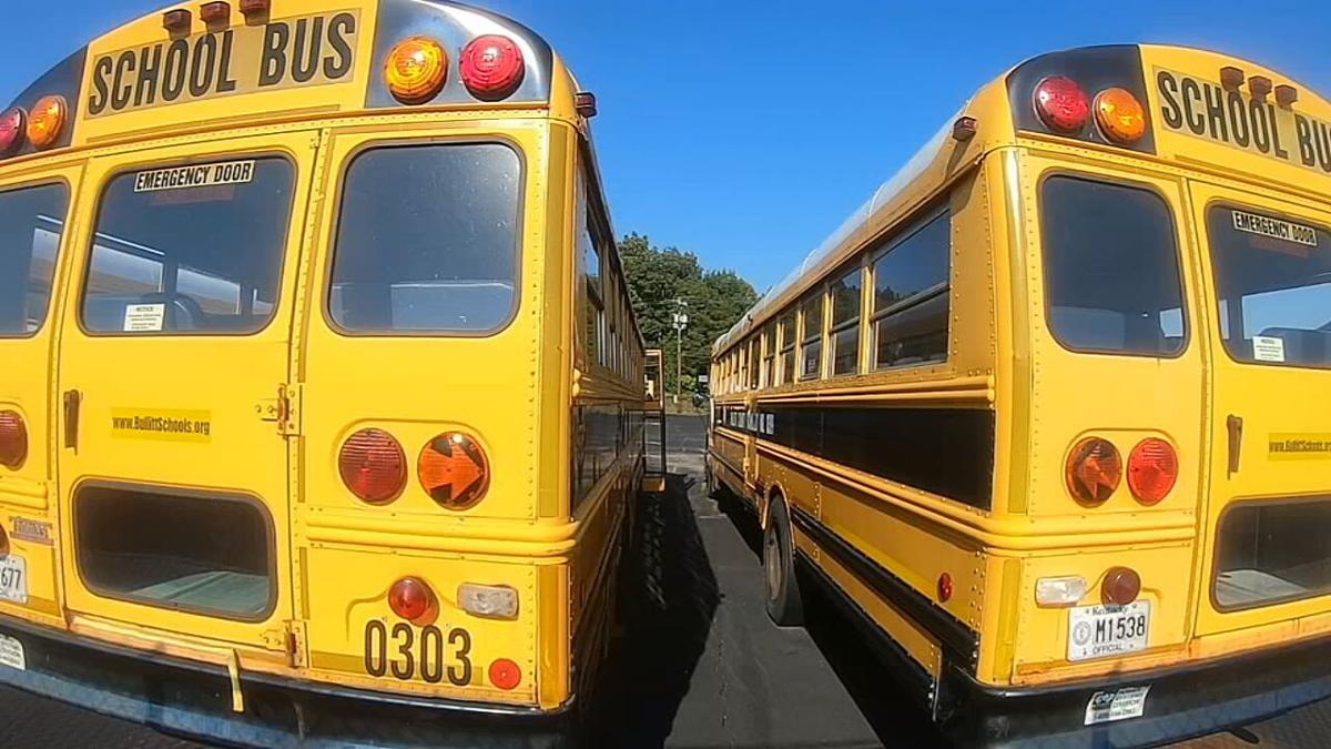 School buses (generic).jpeg