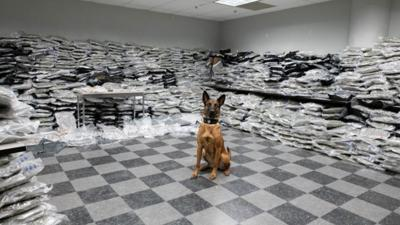 Chicago Police find 1,500 pounds of pot during traffic stop