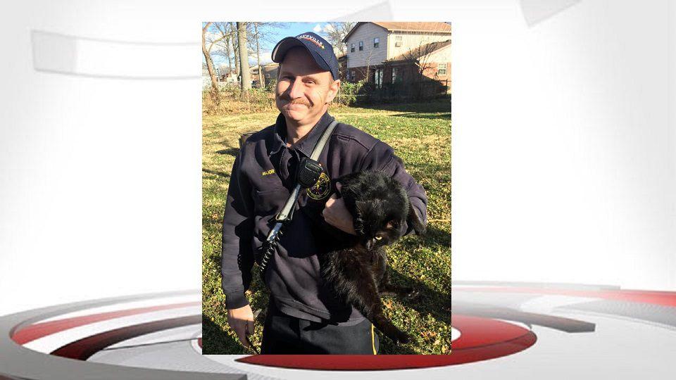 Clarksville Cat Rescue