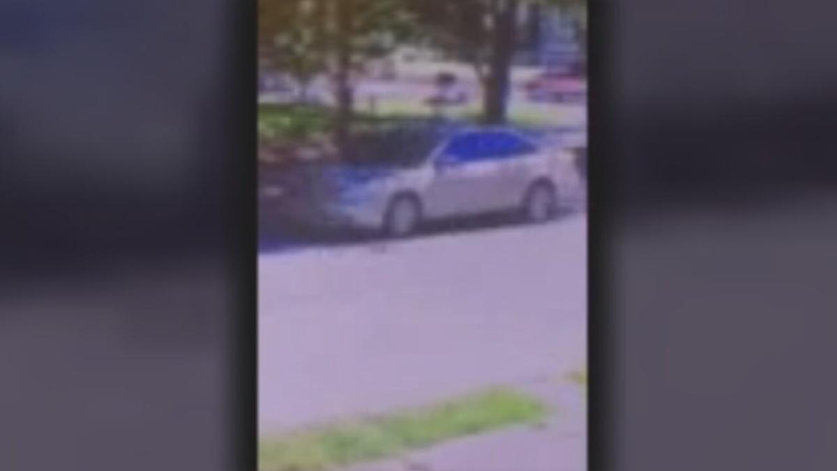 LMPD HIT AND RUN SEARCH _303.jpeg