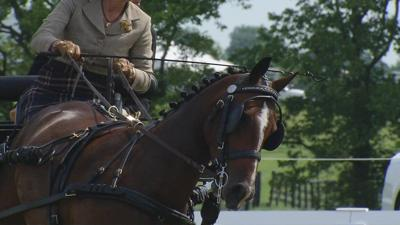 Kentucky Classic Combined Driving event wraps up at Hermitage Farm