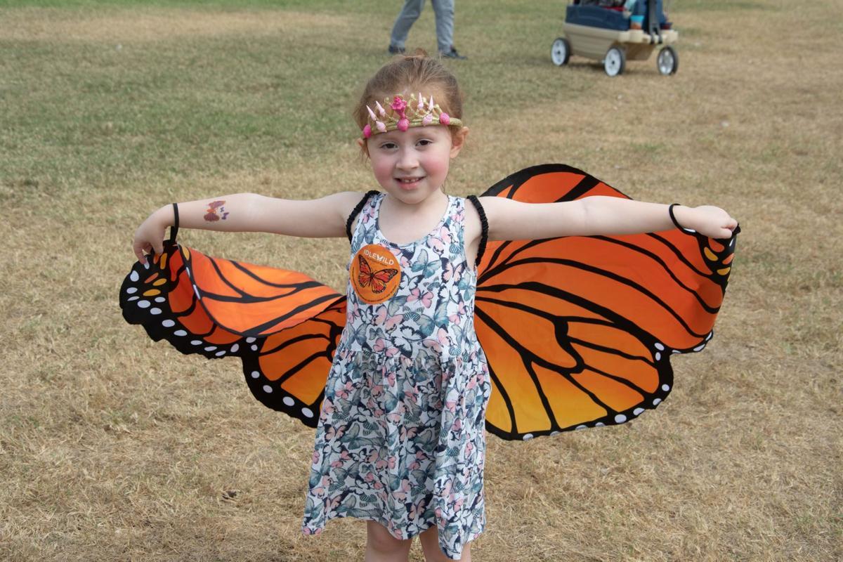 Louisville Zoo Flutter Fest 2.jpg