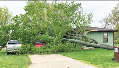 - High winds hit Seymour
