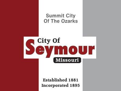 - City flag votes sought 2
