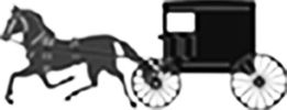 Run-away horse