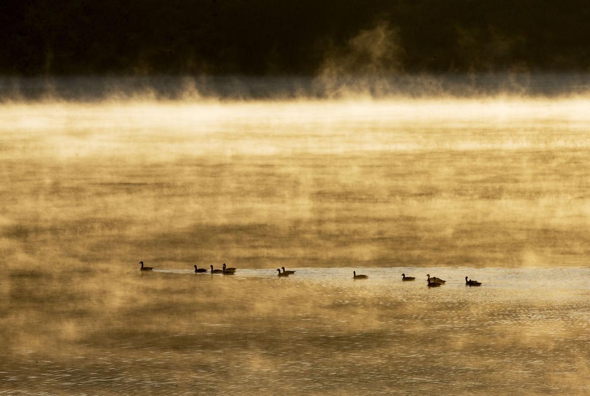 191124-newslocal-fog 01.jpg