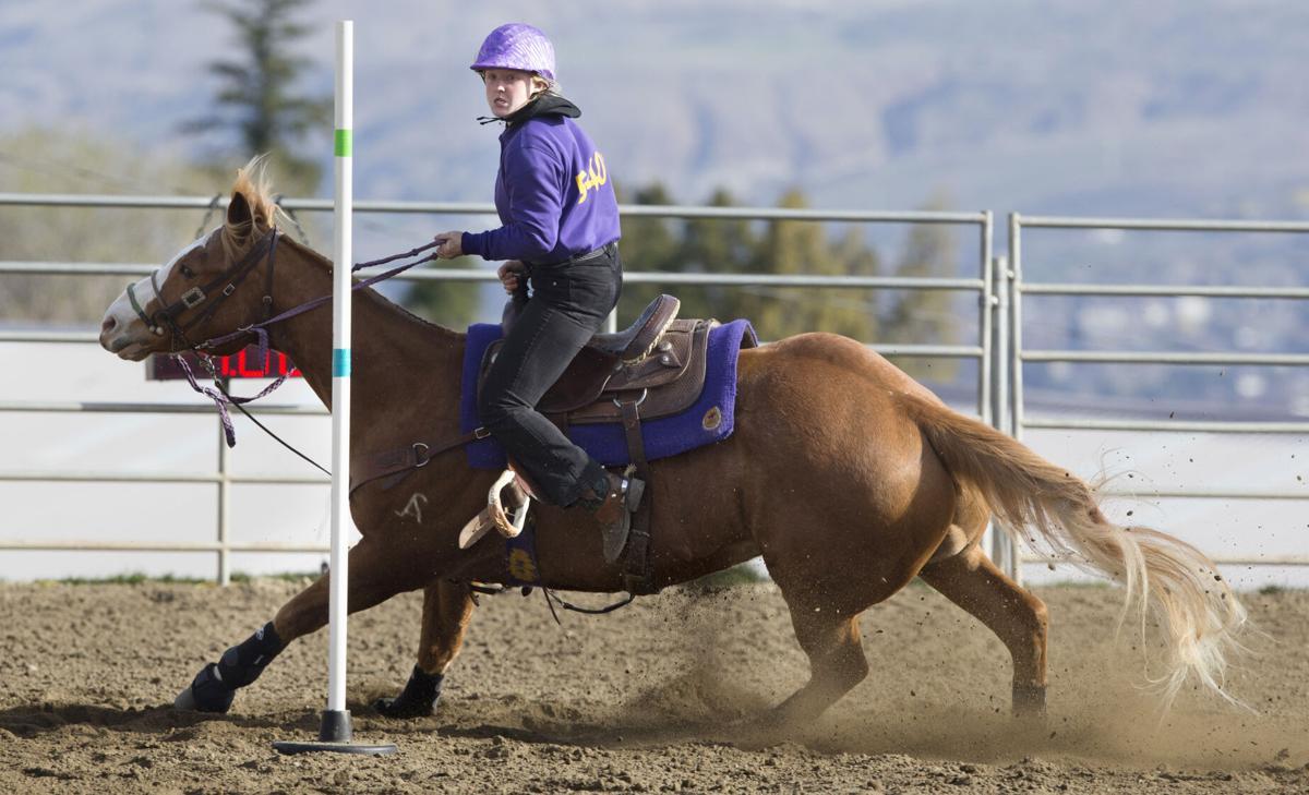 210406-newslocal-horse 01.JPG