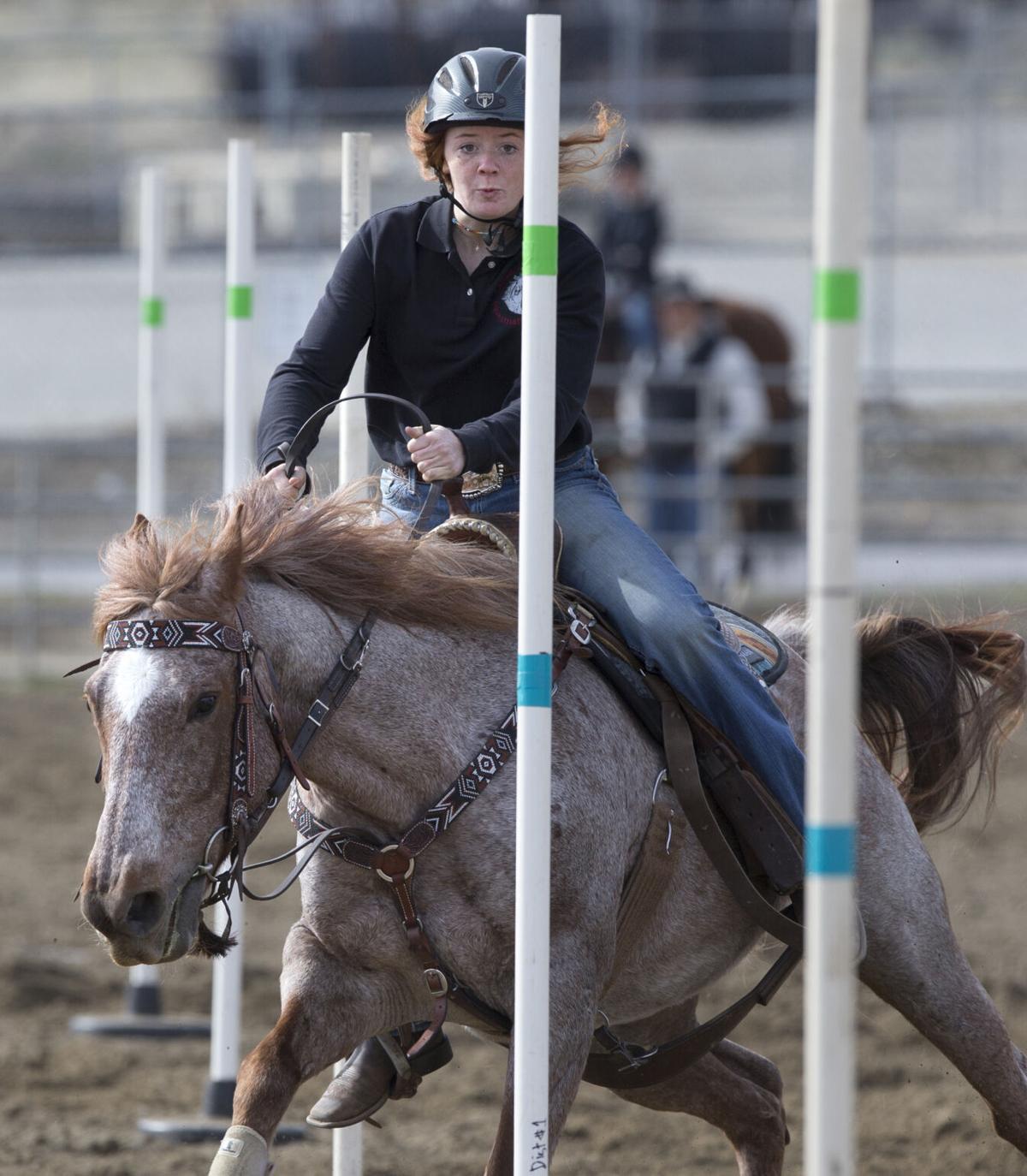 210406-newslocal-horse 02.JPG