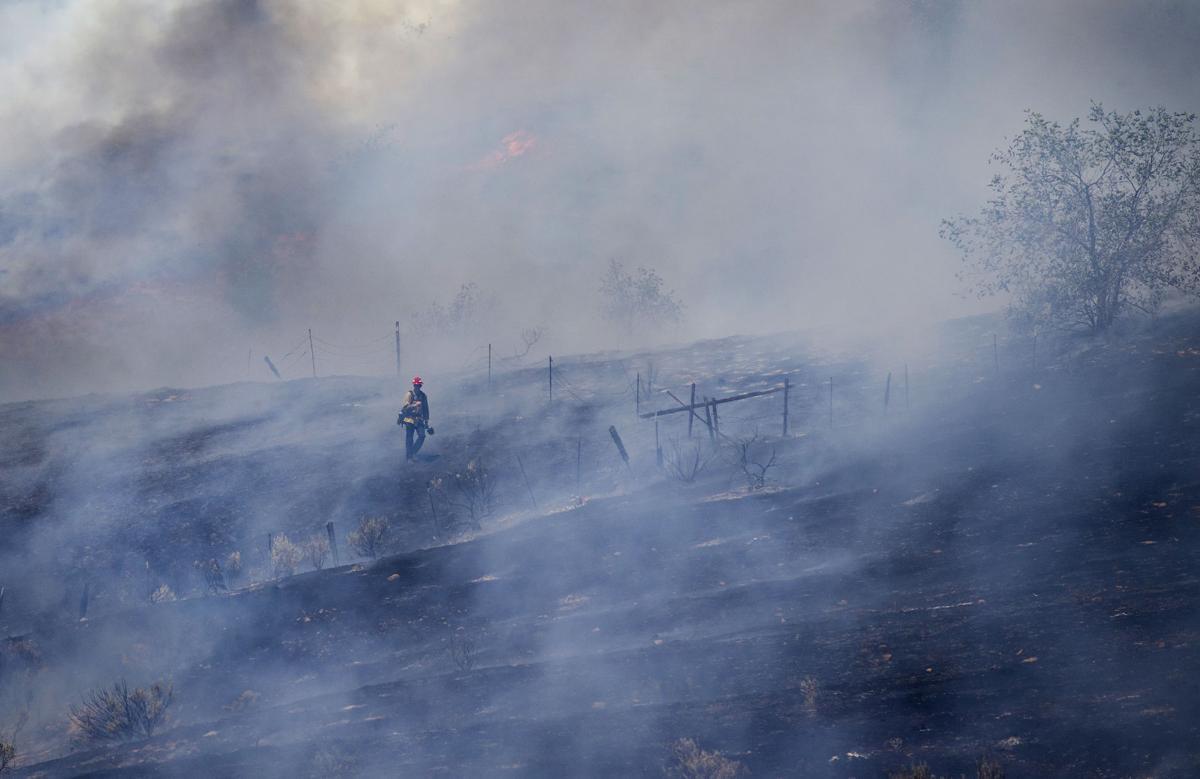200714-newslocal-brushfiregallery 01.jpg