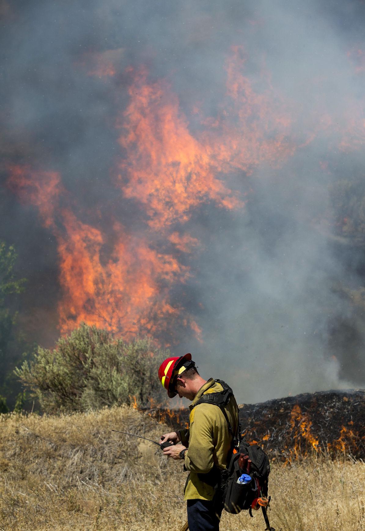 200714-newslocal-brushfiregallery 02.jpg