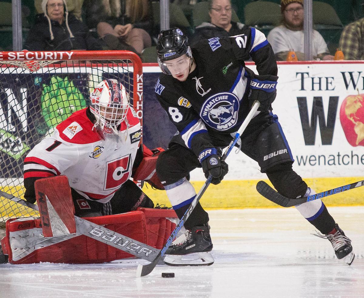 01232019 WildHockey 19.jpg.jpg